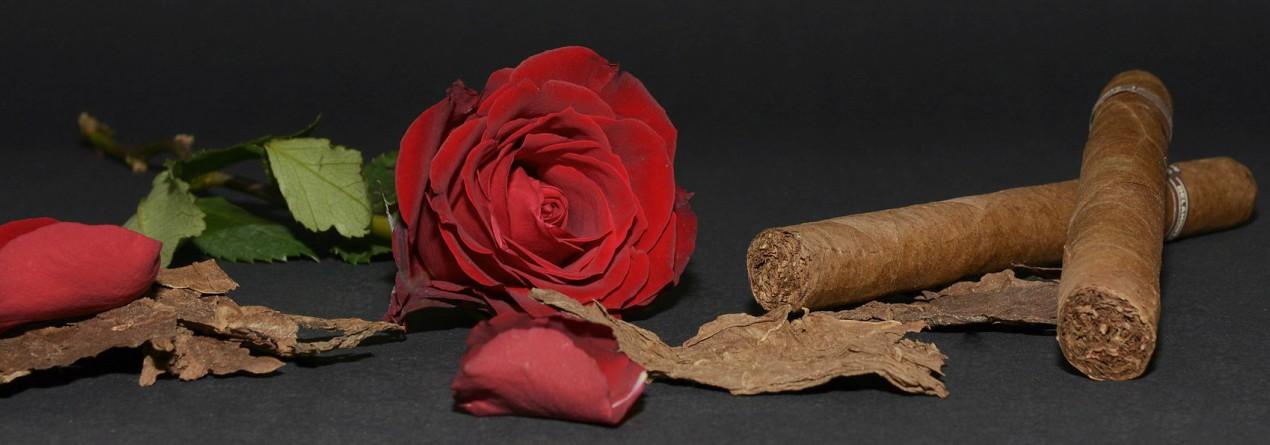 Tabakas Izstrādājumi